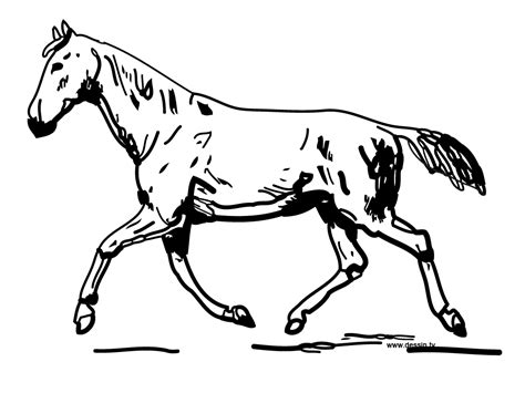 coloring pages of horses with wings free coloring pages of with wings