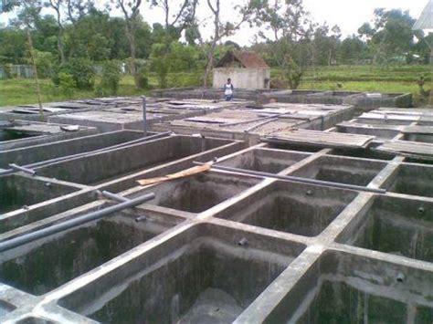 Bak Sortir Lele Umur 1 Bulan mensterilkan kolam beton dari bau bibitikan net