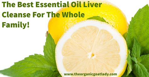 Optimal Essentials Detox by The Best Essential Liver Cleanse For The Whole Family
