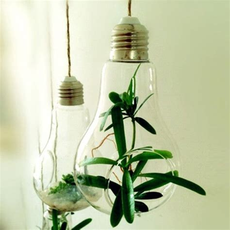 Plants In Water Vase by 2015 Sale New Glass Bulb L Shape Water Plant