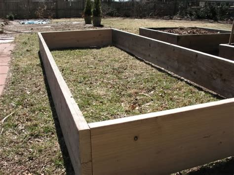 how to fill a raised garden bed filling empty raised bed quickly ideas