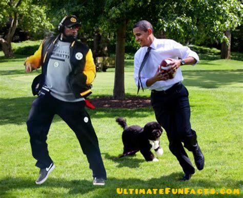 Mike Tomlin Memes - ultimatefunfacts com 187 fun mike tomlin graphics memes