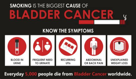 abdominal ct scan detect bladder cancer scary symptoms