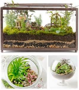 tank terrarium inspiring ideas pinterest