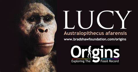 Example Great Resume by Lucy Australopithecus Fotolip Com Rich Image And Wallpaper