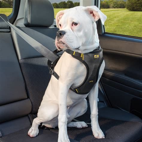 puppy harness impact seat belt harness kurgo care 4 dogs on the go