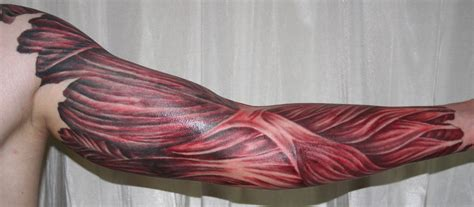 muscle tattoo arm with tissue5 by 2face on deviantart