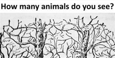 How many animals do you see in this picture viralslot