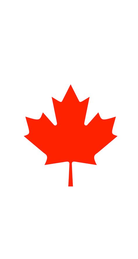 file canadian maple leaf jpg what leaf is on canadian flag theleaf co