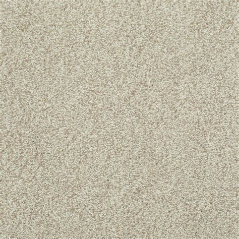 home decorators collection carpet sle slingshot iii