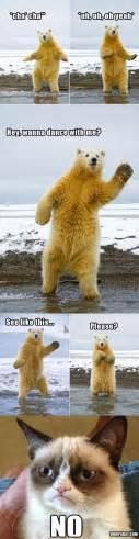 Dancing Polar Bear Meme - grumpy cat dancing with polar bear funny pictures dump