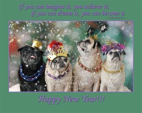 new years pug happy new year hug a pug