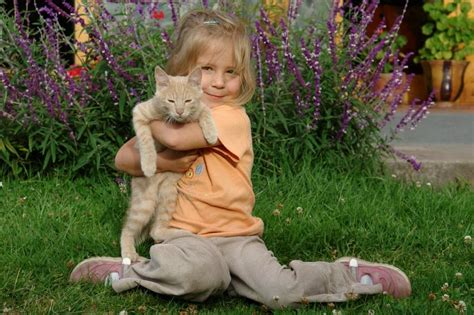 cat child facts about cats slideshow