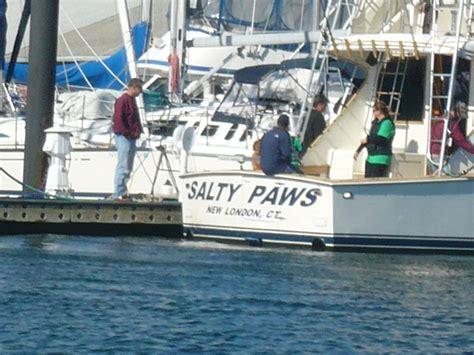 salty dog boat name salty paws boat names boat names boat names
