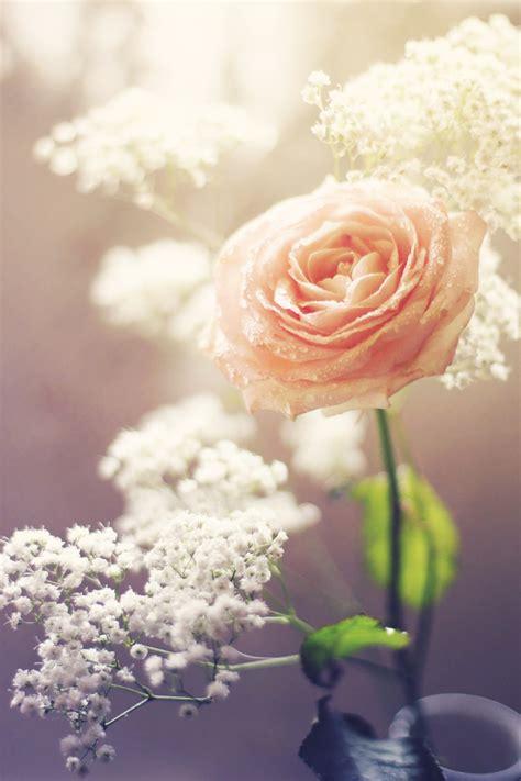 Len Flur by Le Fleur Amour By Silvermoonswan On Deviantart