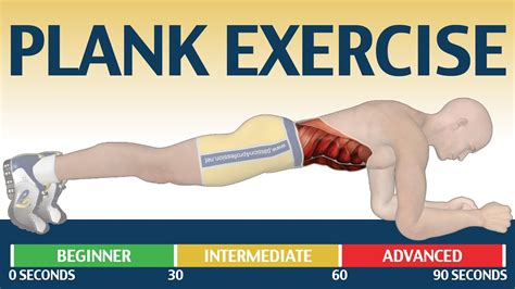 plank images how to plank