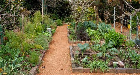 fresh amazing home vegetable garden australia 10902 organic garden food for thought home beautiful magazine