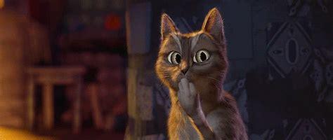 The Ooooohc by Ooh Cat