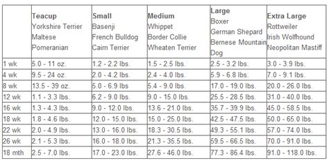 bulldog puppy weight chart bulldog puppy growth chart akc bulldog puppies for sale akc