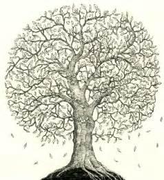 family tree by mattiasa on deviantart