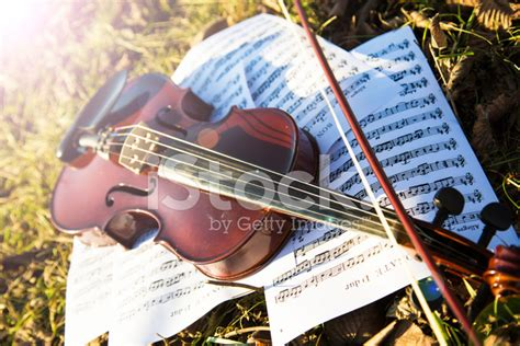 Dress Glow Violin violin and notes on autumn leaves stock photos freeimages