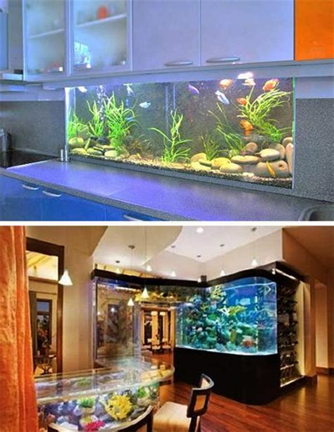 aquarium design network tanked 35 unusual aquariums and custom tropical fish tanks for