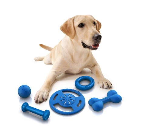 puppy products how to choose the right toys for your pet wishforpets