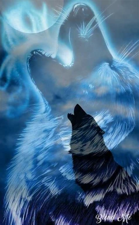 pin  megi ardana  divers wolf spirit animal fantasy wolf wolf art