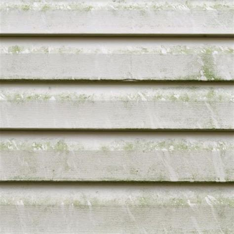 remove mold from siding of house how to remove mold from vinyl siding vinyls oxygen bleach and vinyl siding