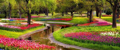 giardino fiorito vivaio roma comandini garden