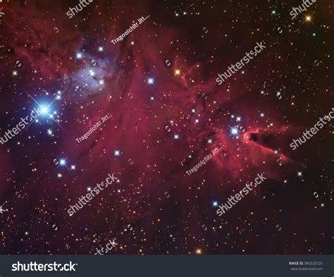 christmas tree nebula real nebula cluster called cone stock photo 385520725