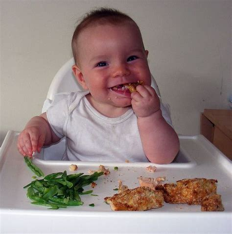 1000 images about baby led weaning on finger foods food and meals 1000 images about blw on led homemade baby foods and sources of iron