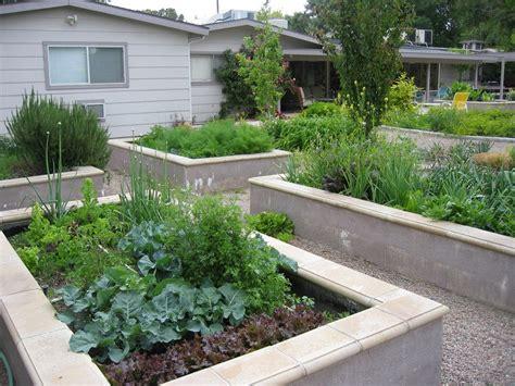 landscape beds poured concrete raised beds landscape modern with cut