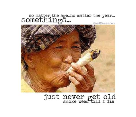 Weed Smoking Meme - smoking weed never gets old marijuana pic weed memes