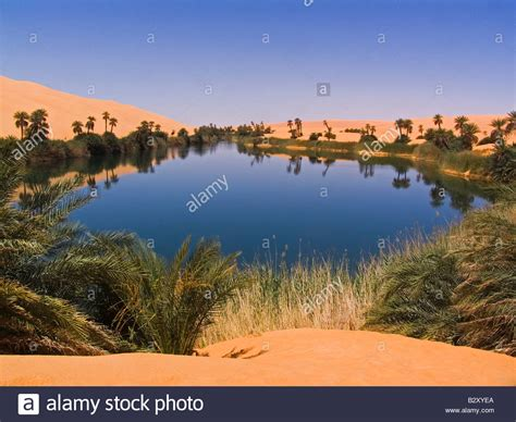 africa libya desert oasis of un alma stock photo