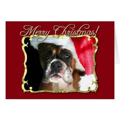 Boxer Cards - merry boxer greeting card zazzle