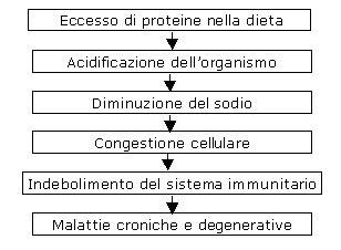 alimenti fermentano nello stomaco come combinare gli alimenti per digerire meglio 1channel