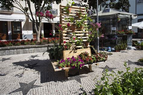 Soares Flower Garden Nursery Mezzo Atelier Argot Ou La Maison Mobile Reimagine Traditional Architecture In The Azores