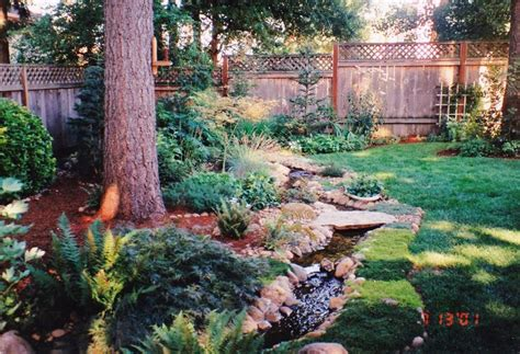 a backyard in the pacific northwest grow pinterest