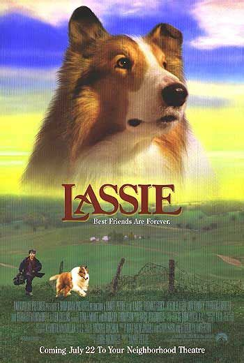 lassie puppies lassie the rotten tomatoes
