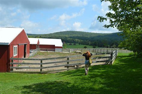 farm sanctuary farm sanctuary