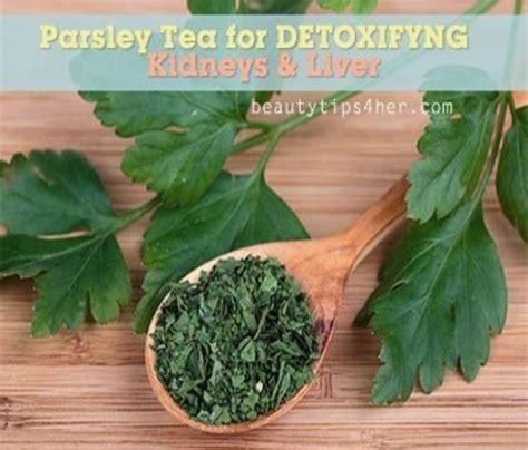 Detoxing With Parsley Detox by Diy Parsley Tea Detox Trusper