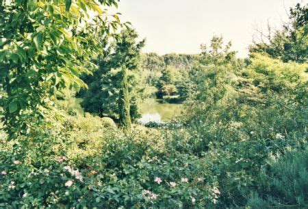 giardini della landriana orari giardini della landriana 187 tor san lorenzo 187 provincia di