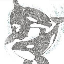 orca whale coloring favecrafts