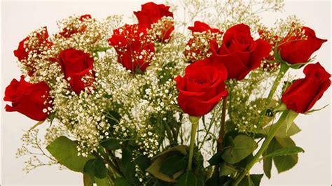 imagenes de un flores 024 un ramo de flores rojas youtube
