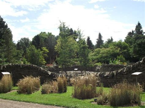 Dundee Botanic Gardens Evolution Garden Picture Of Of Dundee Botanic Gardens Dundee Tripadvisor