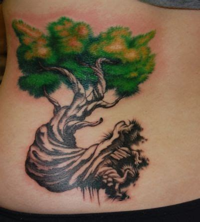 cedar tree tattoo 37 best images about ideas on trees