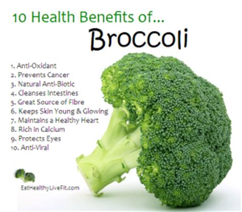Broccoli Sprouts Helath Benefits Detox by The Health Benefits Of Broccoli