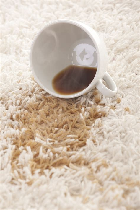 Coffee Stain On Rug by Nontoxic Carpet Cleaning Tips