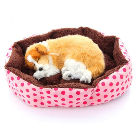 Cutest Cats Pet Pet Pet Product 9 by Pg Mall Malaysia Shopping Buy Sell